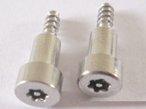 Plum burglar step screws
